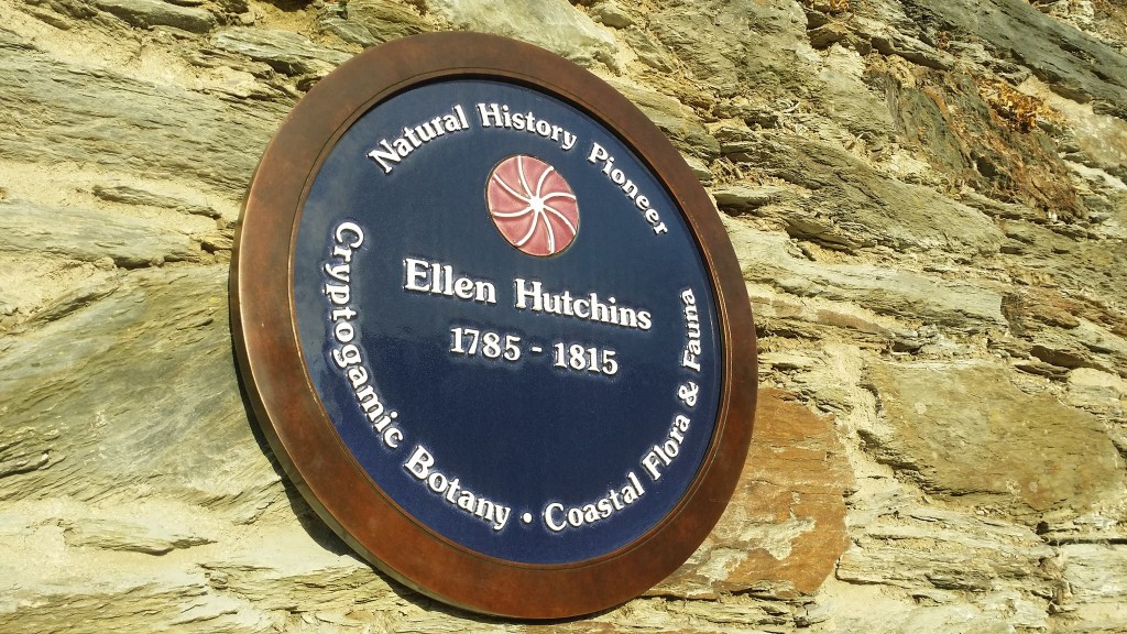 Ellen Hutchins plaque at Garryvurcha Church , Bantry.