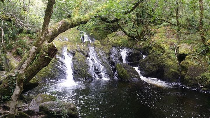 Glengarriff Woods Waterfall