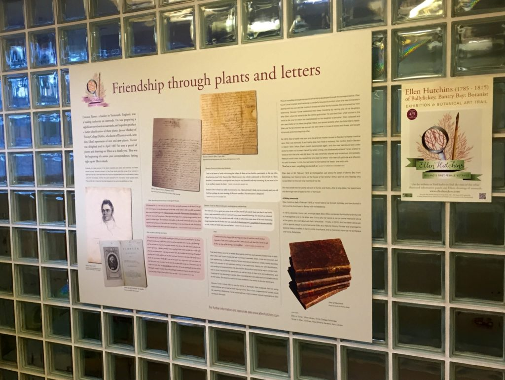 Part of the exhibition in Bantry Credit Union