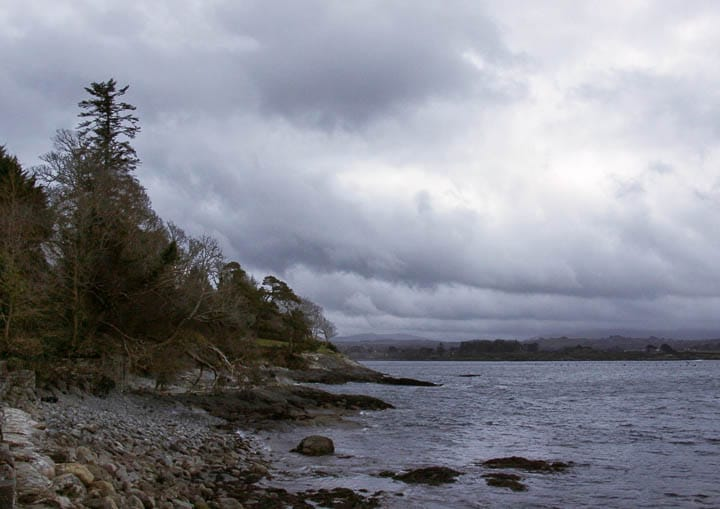 The shore of Bantry Bay, at Ardnagashel, one February day, 2013.